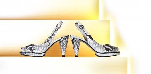 Stillifefoto - Gucci-DamenSchuhe Crocoleder