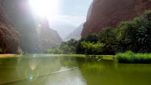 Landscapefoto--Flusslauf-an-einer-Oase-bei--Salalah---Oman